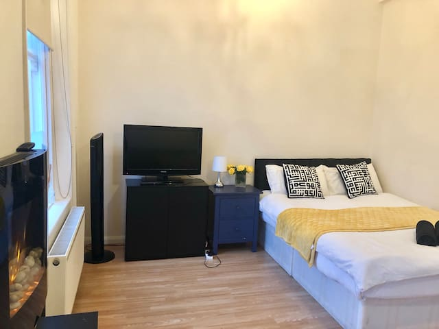 Large Apartment Central London