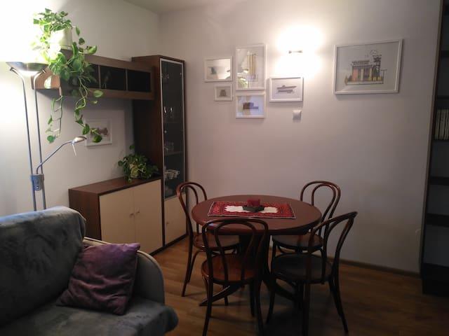 Apartament/Flat/Studio in Bytom near Katowice