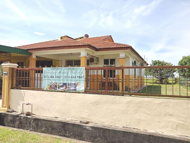 Homestay Yan Sawah Padi Kedah