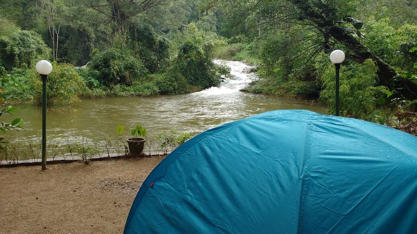 Camping in Munnar at Ela Ecoland Nature Retreat - Munnar - Sátor