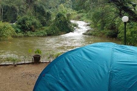 Camping in Munnar at Ela Ecoland Nature Retreat - 慕那尔(Munnar) - 帐篷