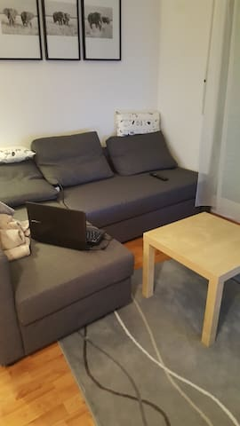 Appartement cool-confort Brunstatt - Brunstatt