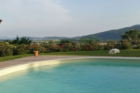 Luxurious panoramic villa with pool - Castel dell'Aquila - Villa