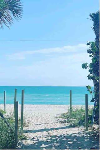 Miami Beach Ocean front apt