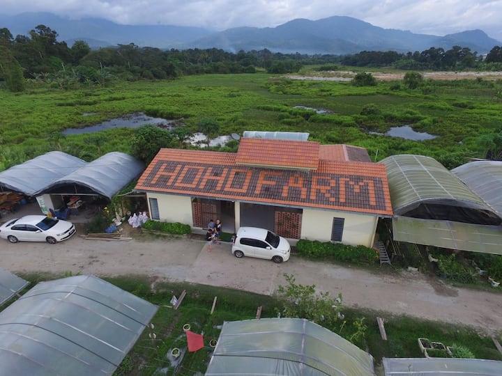 Hoho Farmstay @ Ulu Yam Lama