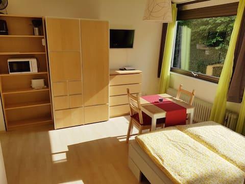 Kleines, modernes 1-Zimmer-Apartment