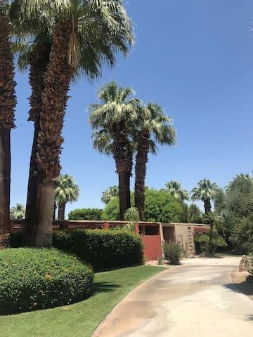 Desert Tennis Estate Oasis