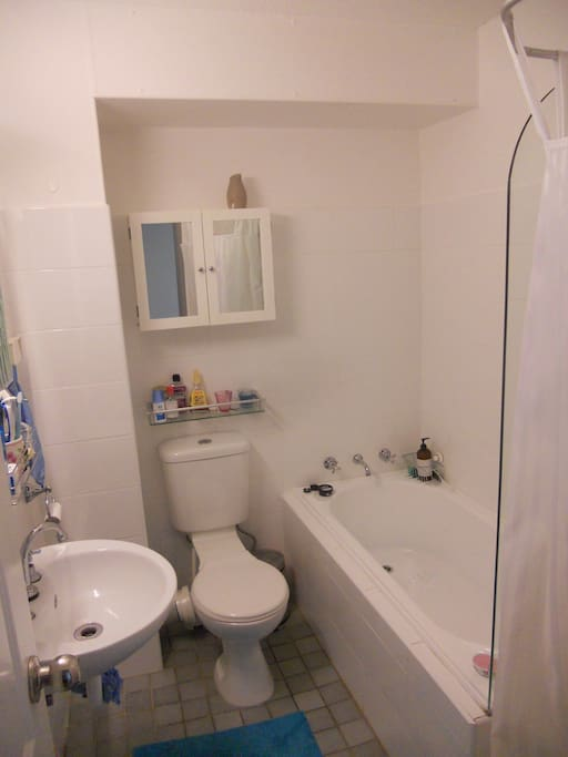 Bathroom with both shower and bath.