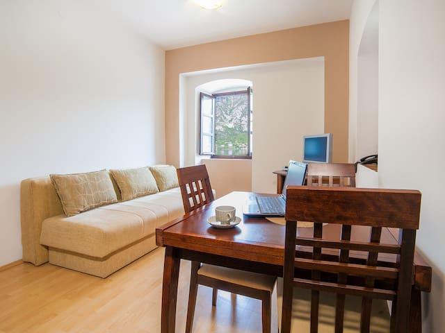 Kostanjica - Comfy One Bedroom Apartment - Kostanjica - Apartment
