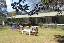The House. Ask for horse riding or horse riding  lessons in advance