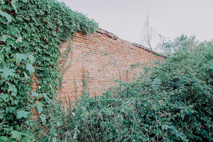 Das ist ein Teil der alten Schlossmauer, hier könnt ihr die Historie hautnah erleben.