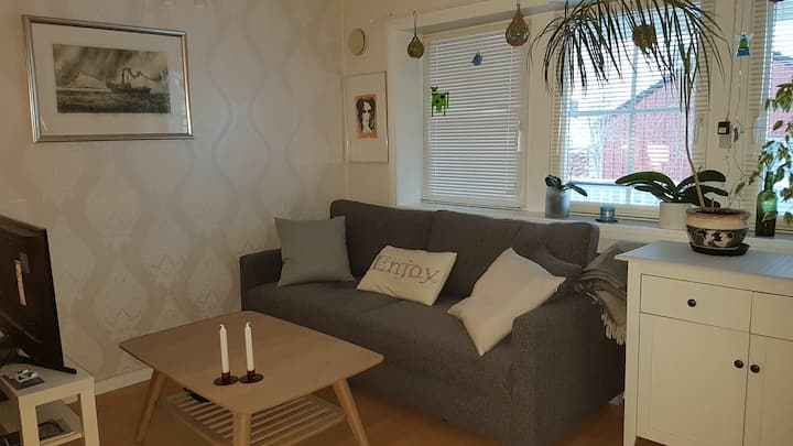 Nice and warm apartment in Tromsø