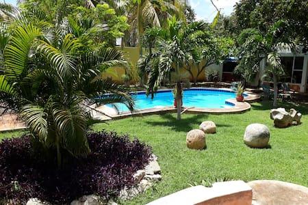 house of the iguanas