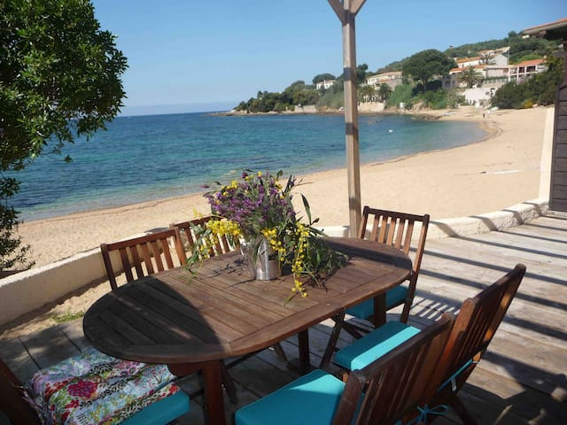 Lovely apartment on the beach - Casaglione