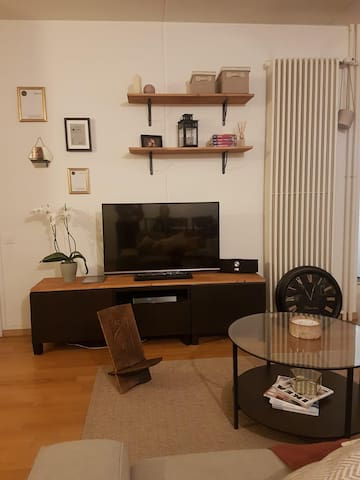 Cozy apartment in Onex, GE with nice view on Jura
