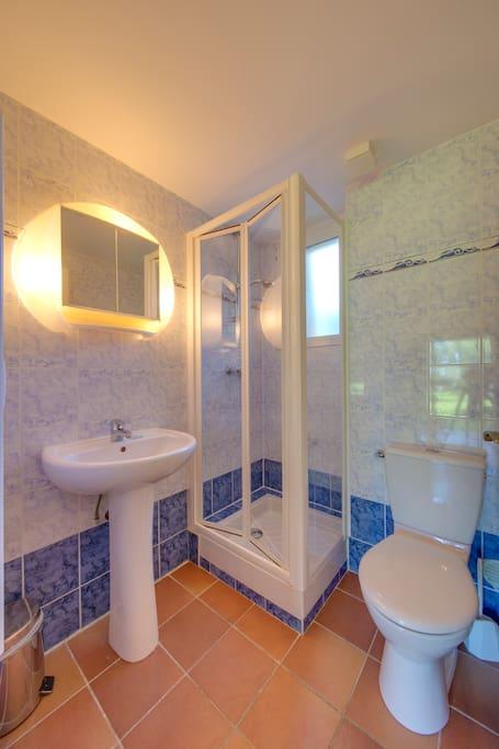 Salle de bain comprenant linge de toilettes