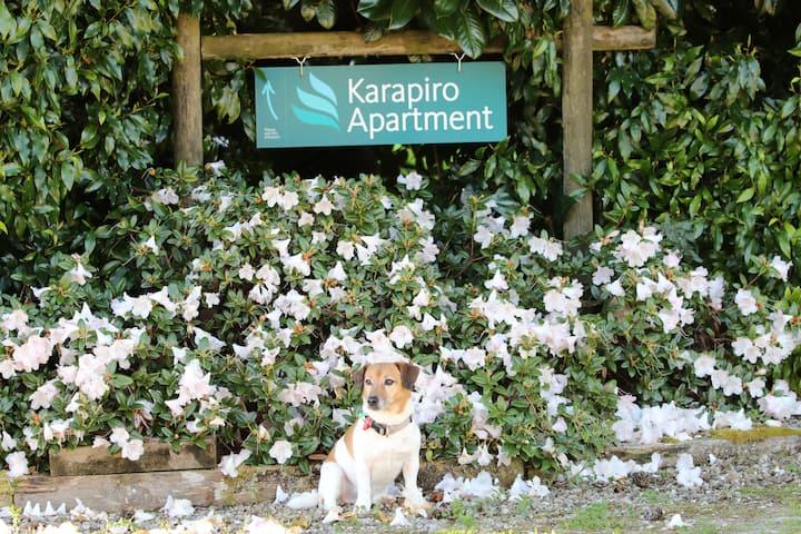 Karapiro Apartment, Cambridge