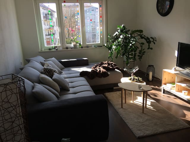 Sunny and comfy flat in the center of Ulm