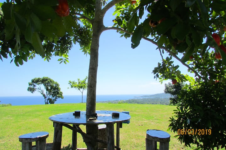 Blu Vista - Nature's Place to Relax