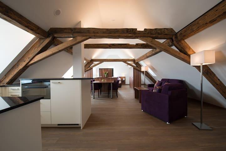 Dachwohnung Hecht - Fehraltorf - Apartment-Hotel