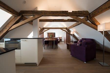 Dachwohnung Hecht - Fehraltorf - Apartemen berlayanan