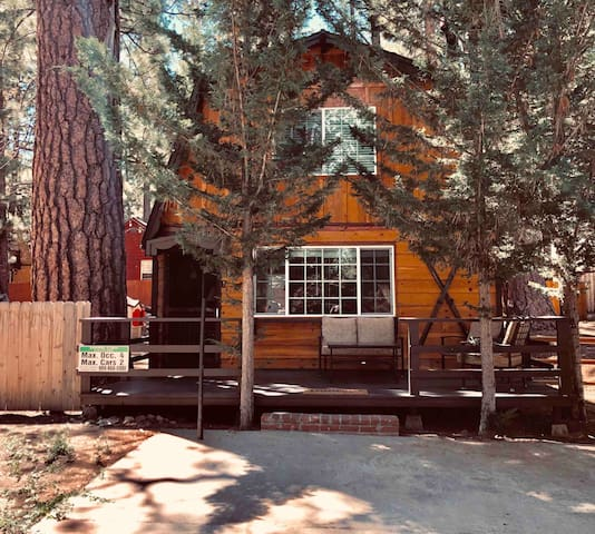 Charming Cabin-Dog friendly-Close to everything!