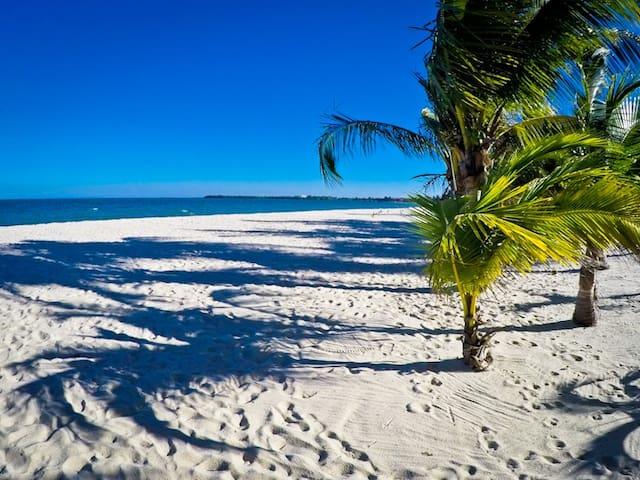 The Colibri beach