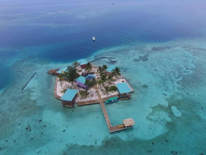 King Lewey's Island Resort Purple Octopus Suite