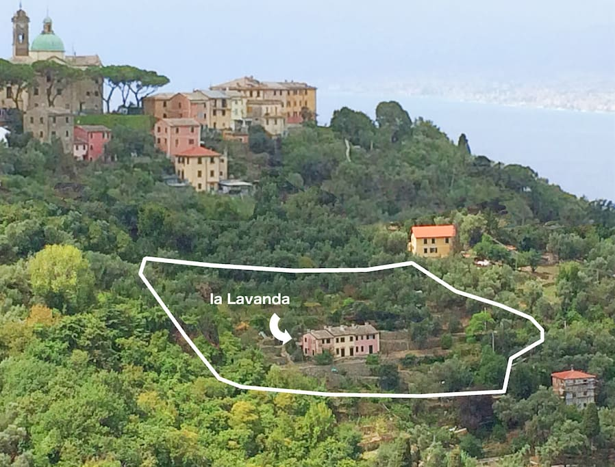 apt. la Lavanda and the all property