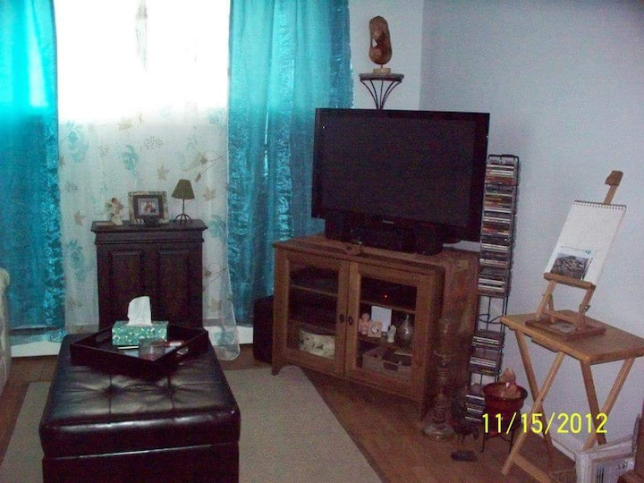 Entire One Bedroom Apt. in the City