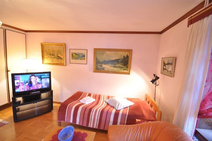 Villa Grönstedt, Enrumslägenhet med egen ingång - Kramfors N - Appartement