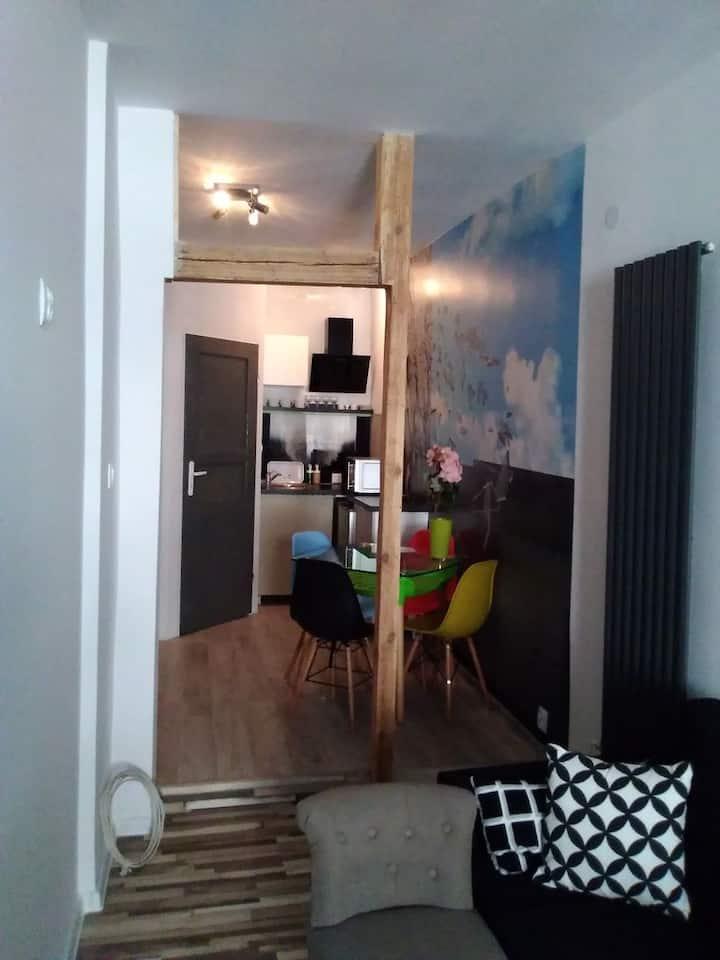 Apartament muzyczny Studio - Stare Miasto
