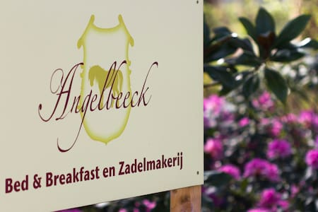 Bed & Breakfast Angelbeeck - Oda + Kahvaltı