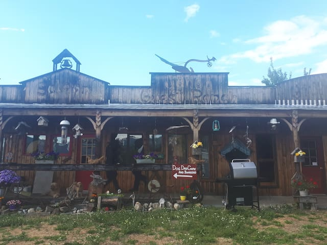 Wild horses mans saloon is cozy and rustic