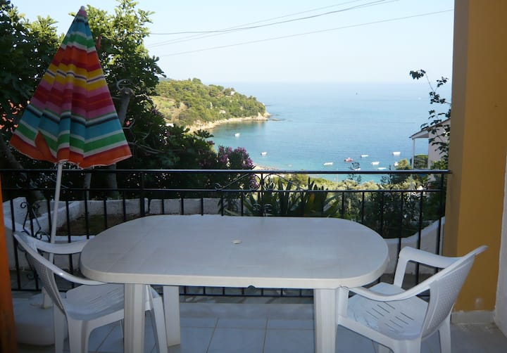 VILLA LEONI VACATION'S - APARTMENT - SEA VIEW