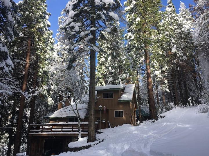 Yosemite Cedar Pine Cabin with HOT TUB
