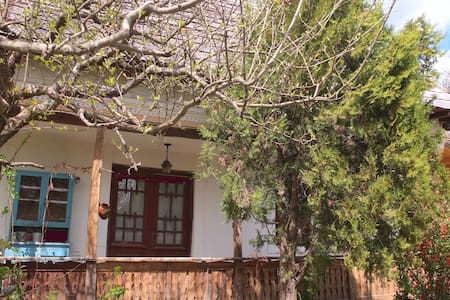 Charming Traditional House. Retreat, Garden&Forest - Vâlsănești - 独立屋