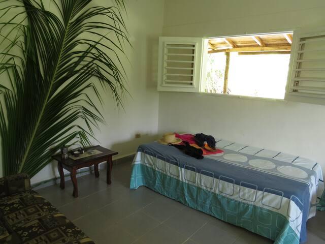 una habitación grande independiente con una cama matrimonial y otra cama personal en otro cuarto pequeno , mas un bano privado.