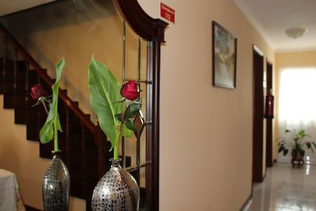 Silvia's House