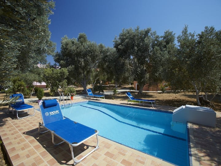 Accommodation at Elia Villas complex for groups