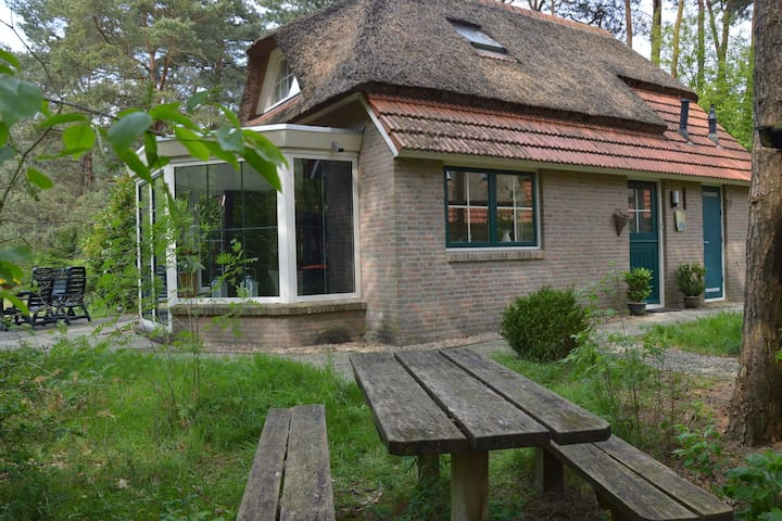 Thatched roof Holiday home in Beerze Overijssel with lush garden