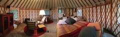 Yurt+Living+in+Grass+Valley+%28pets+allowed%29