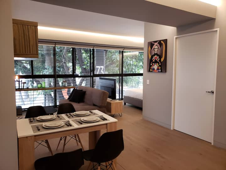 Unique loft w/parking and rooftop in La Roma