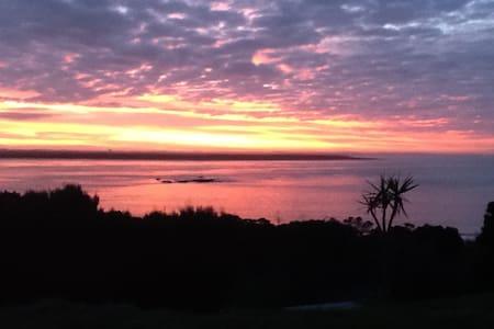 Morepork Barn - Karikari Peninsula
