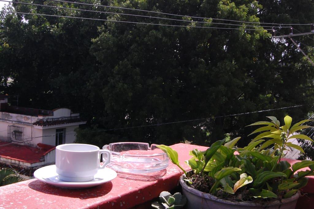 desde nuestro Balcón podrá disfrutar de los amaneceres que ofrece La Habana, acompañado de un delicioso Café Cubano.