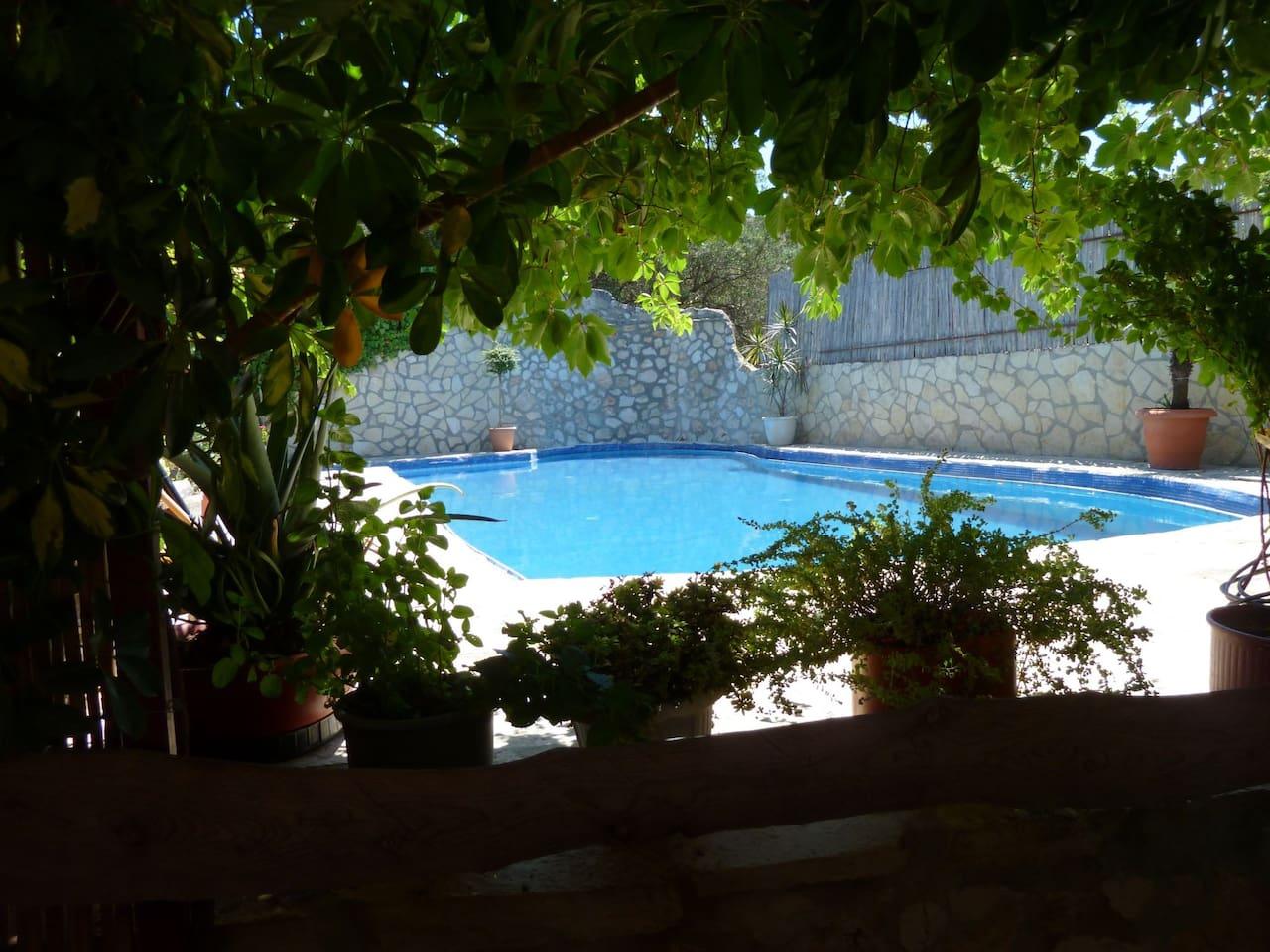 Η κοινόχρηστη πισίνα