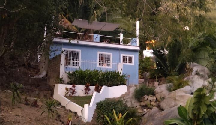 My tropical home@El Nido de las Iguanas
