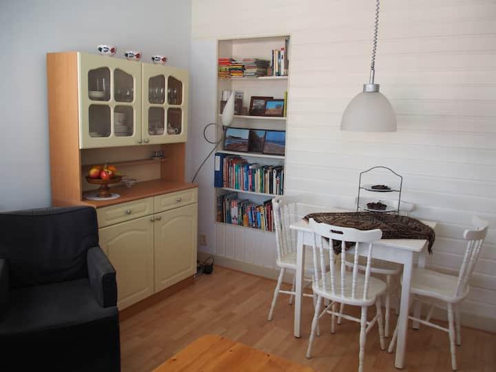 Cozy bed- & living room near centre of Haarlem
