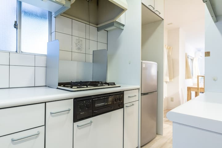 Gas stove and fridge, leading on the main living space of the apartment