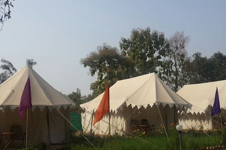 Savitri Camp & Resort `1 - Pushkar - 住宿加早餐